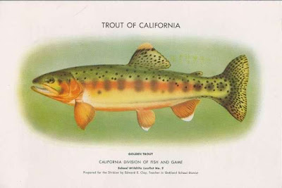 Geotripper the other california geology and the other for Trout fishing california