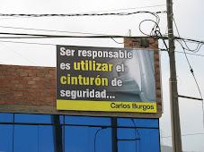 CAMPAÑA EDUCATIVA  DE BURGOS