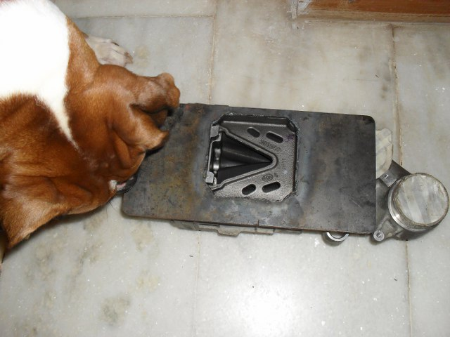 Atom examining the blower with a doggy eye for detail!