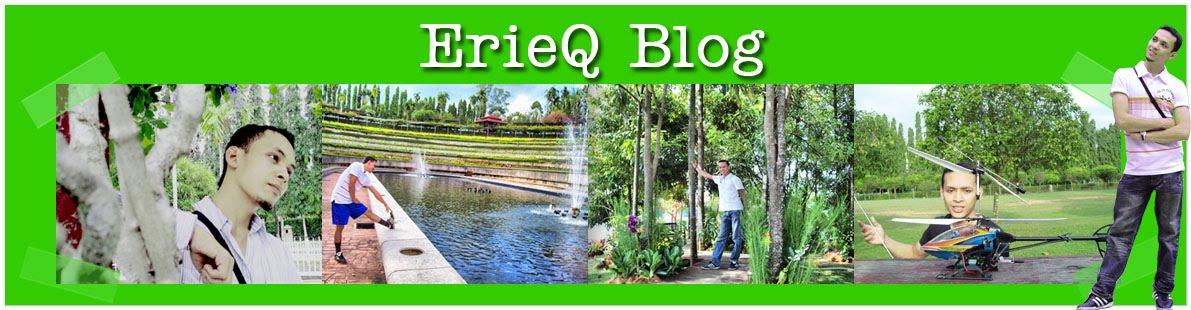 ErieQ Blog