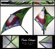 Mon petit parapluie - Clic on