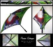 Mon petit parapluie - Clic on