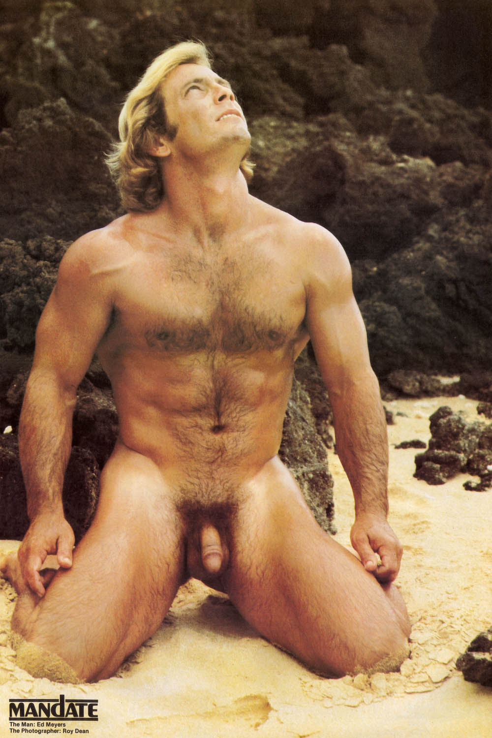 bear free gallery gay naked picture