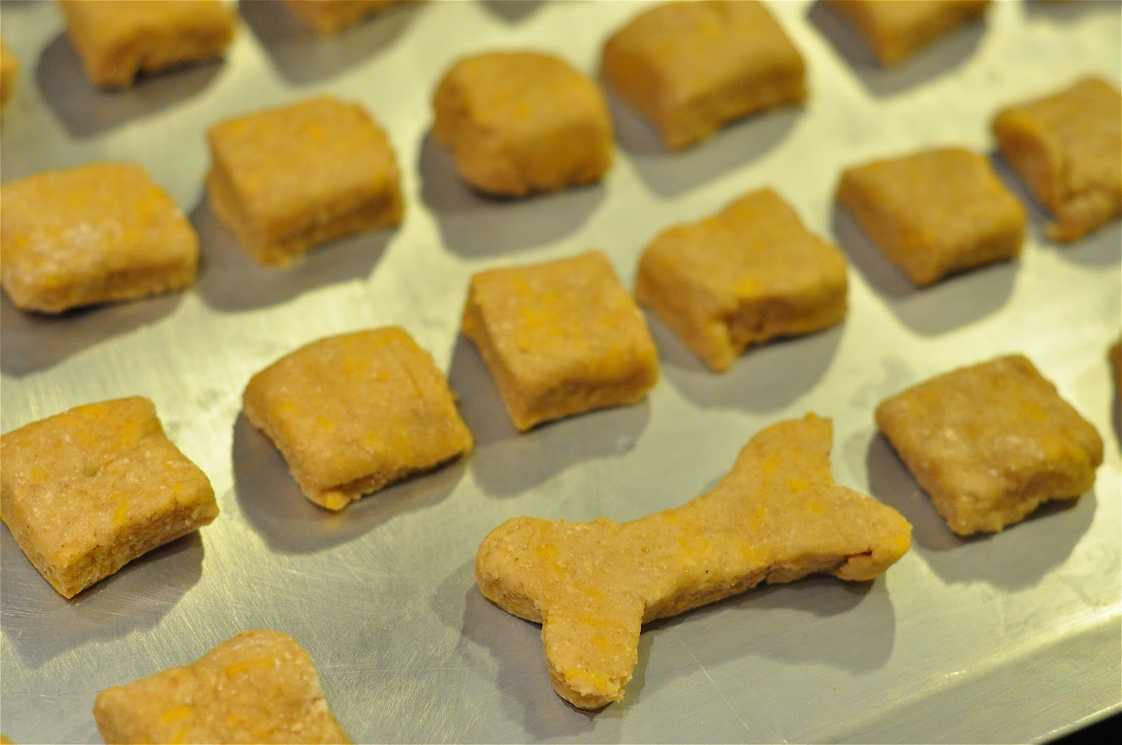 Homemade Pumpkin Bacon Dog Treats • a farmgirl's dabbles