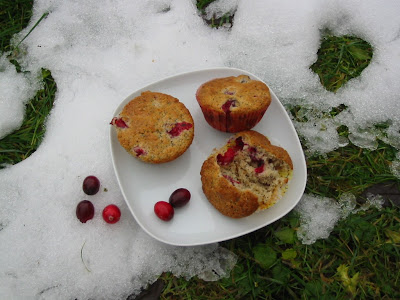 barbaras spielwiese cranberry mohn muffins. Black Bedroom Furniture Sets. Home Design Ideas