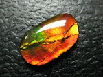 GEMSTONES NATURAL AMMOLITE 6.5 CARAT (SOLD)
