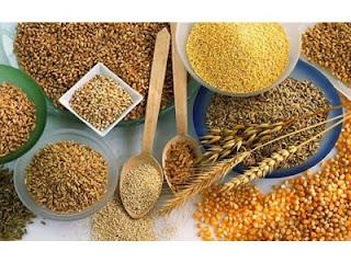 ONG SAÚDE - Produtos Naturais - Alimentos em Pó