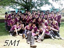 5M1 2008