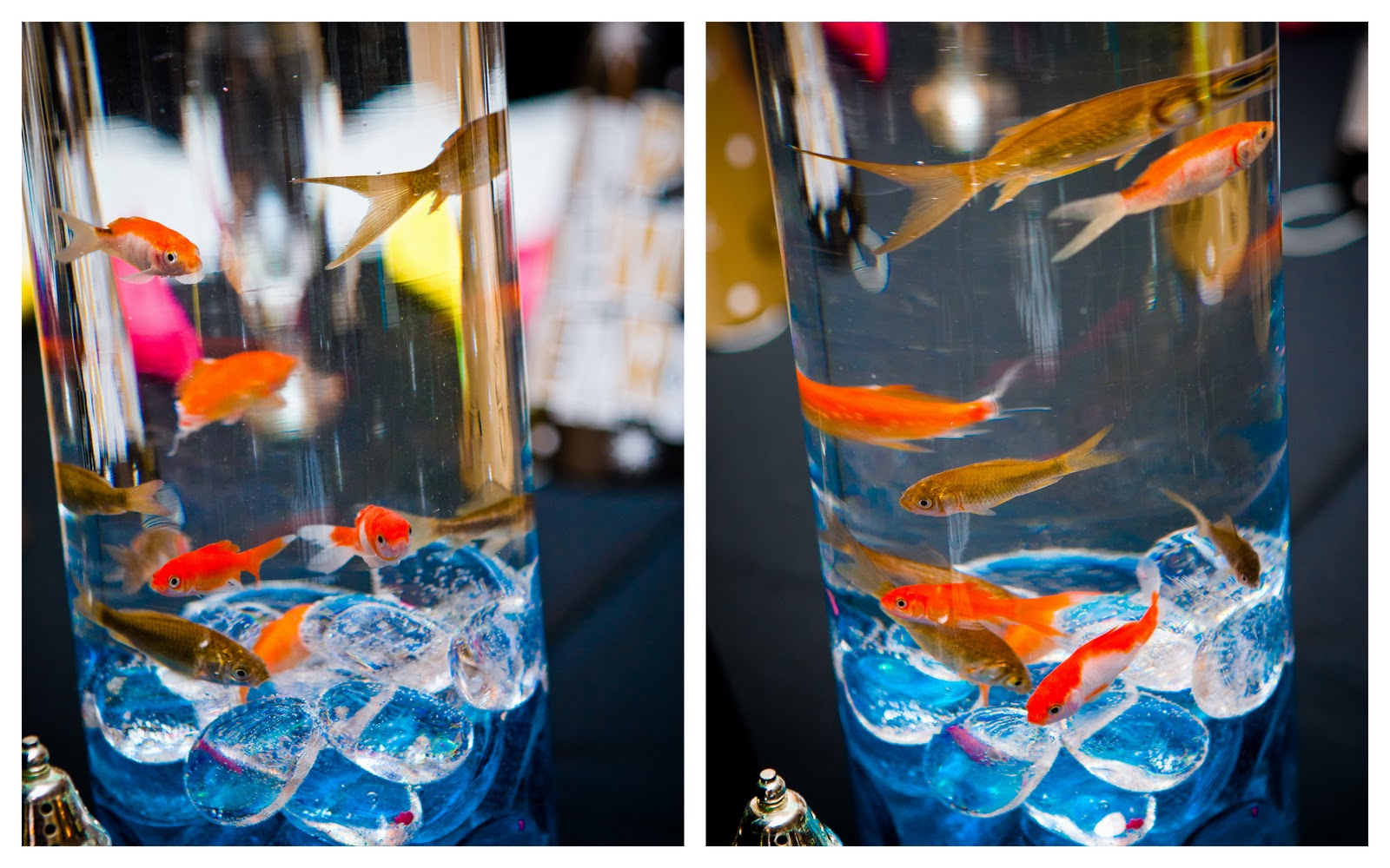 Forever88 wedding reception details for Fish wedding centerpieces