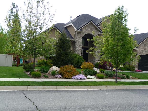 landscape front - of house