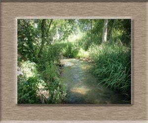uno de los ríos que frecuento