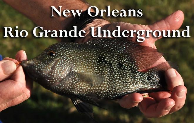 N.O. Rio Grande Underground