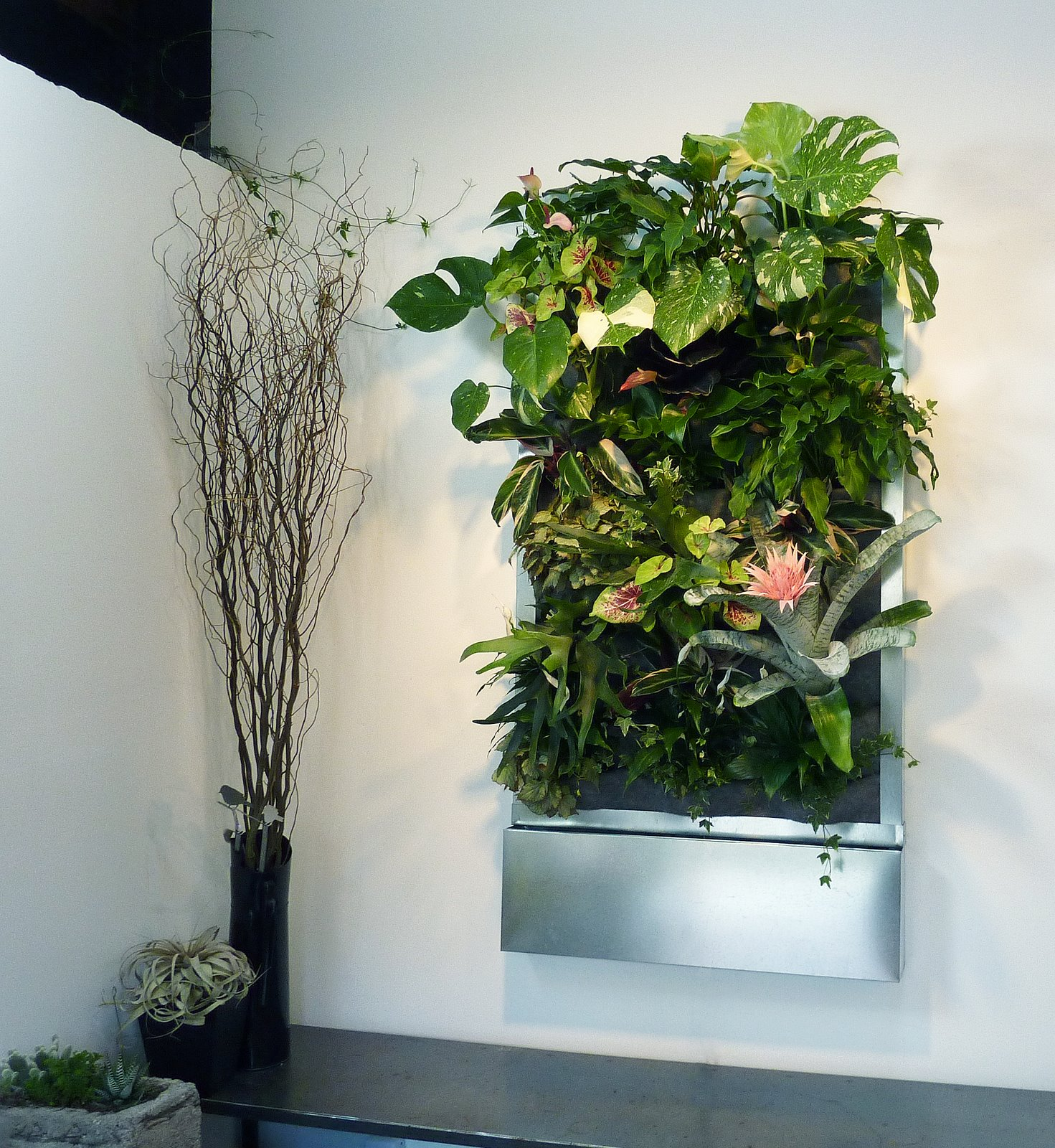plants on walls vertical garden systems july 2010. Black Bedroom Furniture Sets. Home Design Ideas