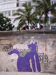 miau en Río