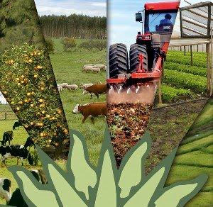 external image sector+agropecuario..jpg