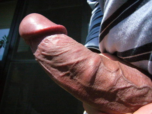 Big Thick Veiny Cock