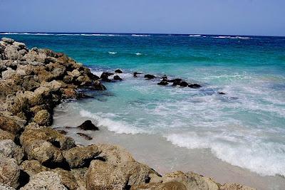 Crane Beach Photo