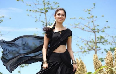 South Indian Actress in Black Saree Photos Tamanna