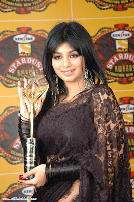 Bollywood actress in saree Ayesha Takia
