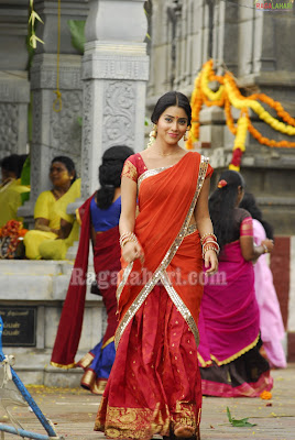 Shriya Saran in half saree
