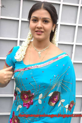 Tollywood Actress Jyothi Krishna in Blue Saree picture