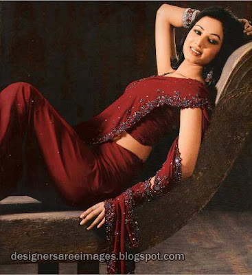 Sonal Chauhan in Maroon Embroidery Saree