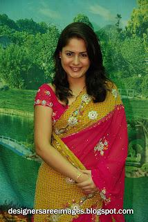 Actress farzana in Pink Designer Saree Pictures