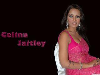 Celina Jaitley Hot Saree Blouse Pictures