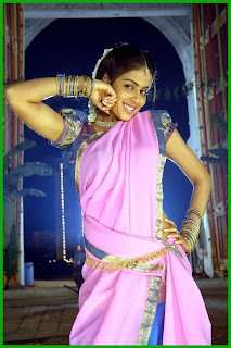 Genelia Hot Saree Blouse Pictures