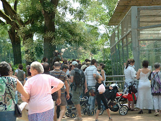 La foule a envahi le parc