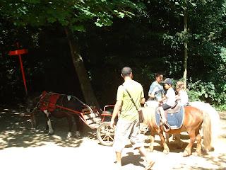 Deux poneys emmènent des enfants
