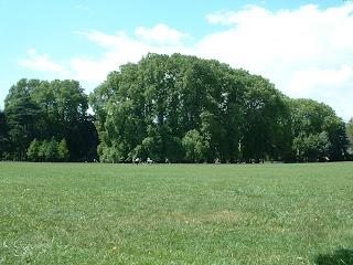 Il n'y a encore personne sur les pelouses du parc