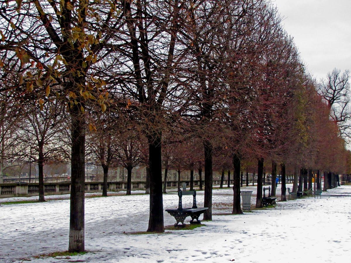 Image gallery jardins paris winter snow for Jardin paris