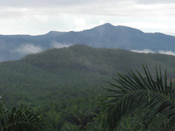 Gunung Jerai