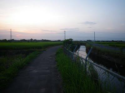 中島用水路