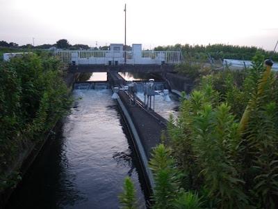 中島用水路の分岐点