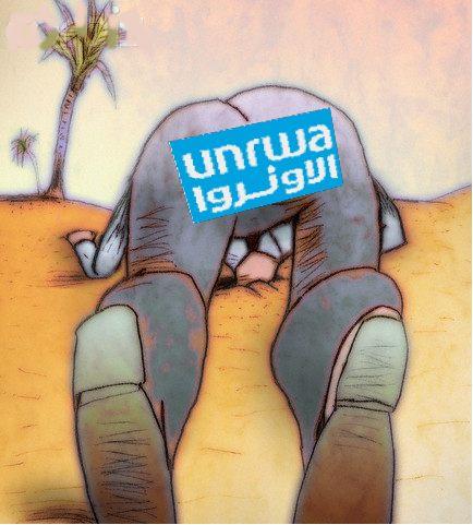 http://2.bp.blogspot.com/_uPzsiWdvLoQ/TMawteyNiNI/AAAAAAAADWw/IlMMXVq20Mk/s1600/unrwa+head.jpg