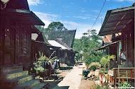 Kampung Halaman