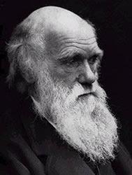 Frases de Darwin
