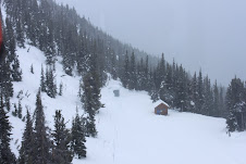 View from the gondola. Snowy.