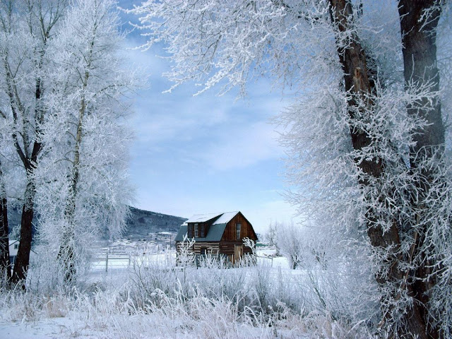 Winter wallpaper Steamboat Springs Colorado
