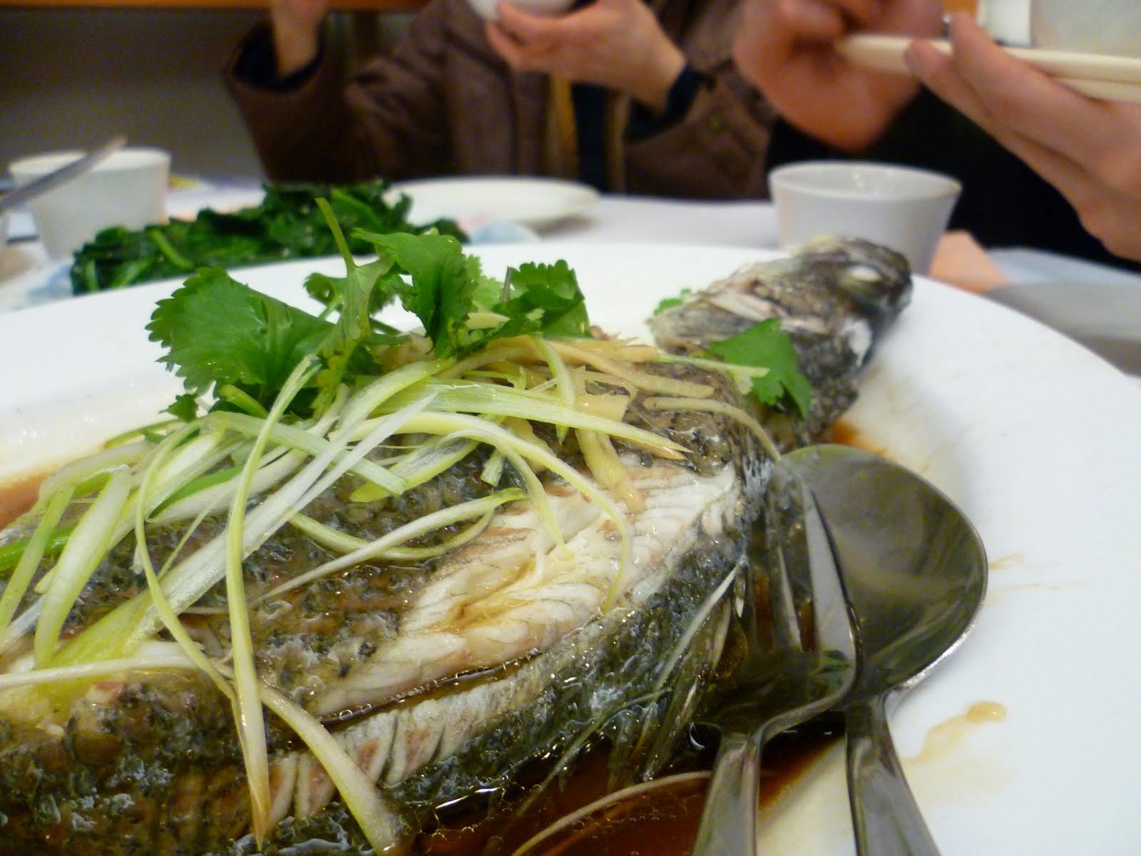 Teenagefoodie 08 01 2010 09 01 2010 for Barramundi fish taste