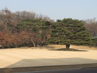 field at Cheong Wa Dae