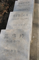 Worldwide Extinction Cemetery