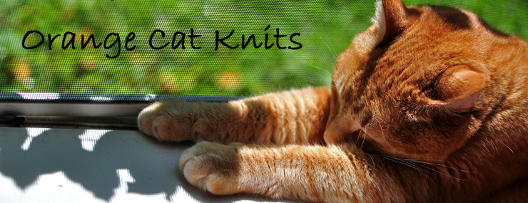 orange cat knits