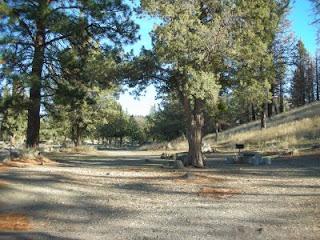 Siskiyou county camping lake shastina public access camping for Lake siskiyou resort cabins