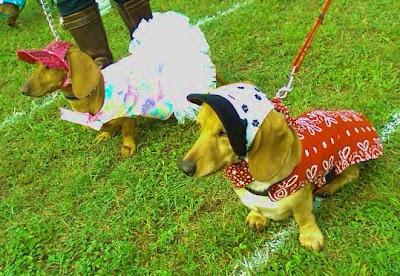 60 70rock blogspot moreover Page1 likewise Oscar Mayer Coupons 2015 moreover 2008 Buda Wiener Dog Race Photos also . on oscar mayer dog wagon