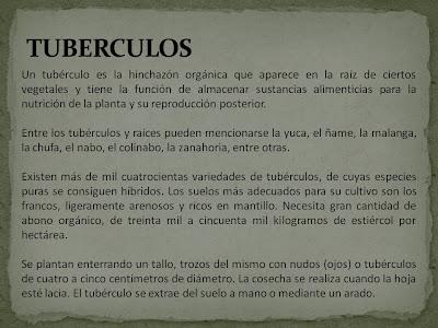 subproductos de tuberculos raices y platanos el portal del rh tirsomestre blogspot com