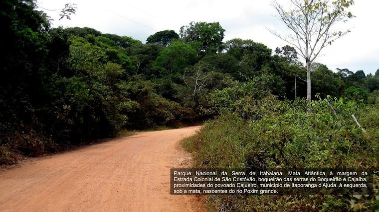 Parque Nacional da Serra de Itabaiana - Foto 03