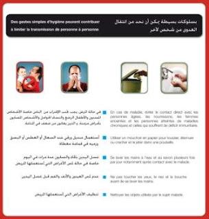 dépliant ministere de la santé maroc lutte grippe porcine